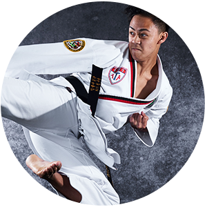 Martial Arts Kickforce Martial Arts Adult Programs