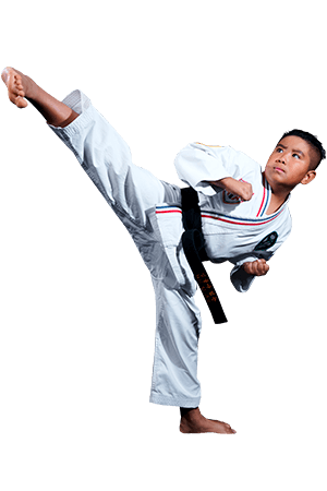 Martial Arts Kickforce Martial Arts happy kid
